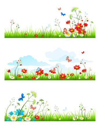 Summer grass and flowers set. Vector design elements