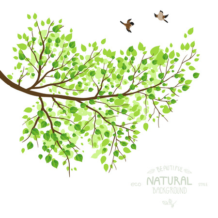 Spring branch with green leaves. Vector illustration. Place for text. Vettoriali