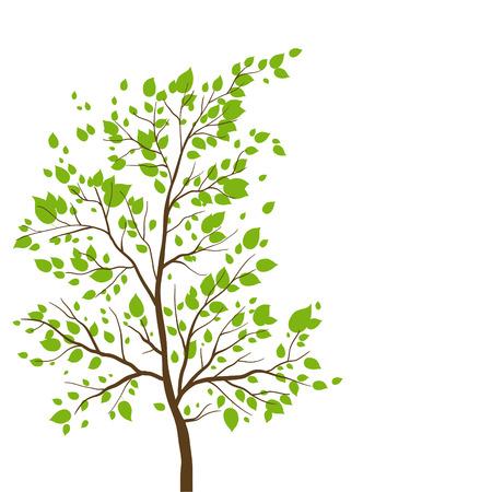 summer trees: �rbol del verano con espacio de copia. Versi�n de la trama.