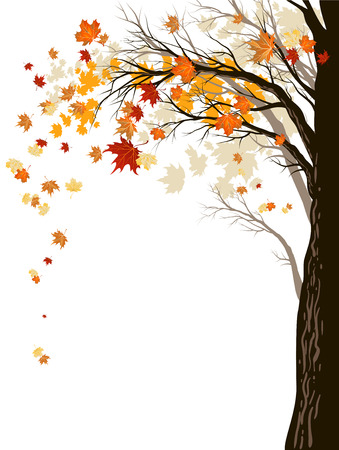 Autumn background with tree.