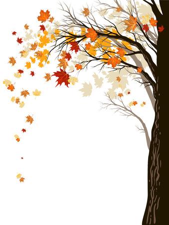 Herbst Hintergrund mit Baum. Standard-Bild - 30366411