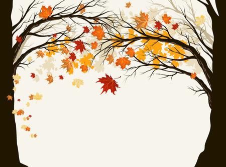 Autumn trees with copy space Zdjęcie Seryjne - 30535674