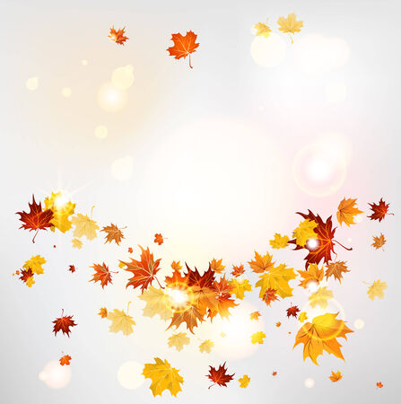 Abstract fall background with copy space  Vector