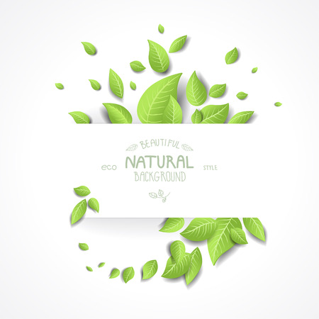 Abstract eco background with fresh green leaves. Place for text. Vector