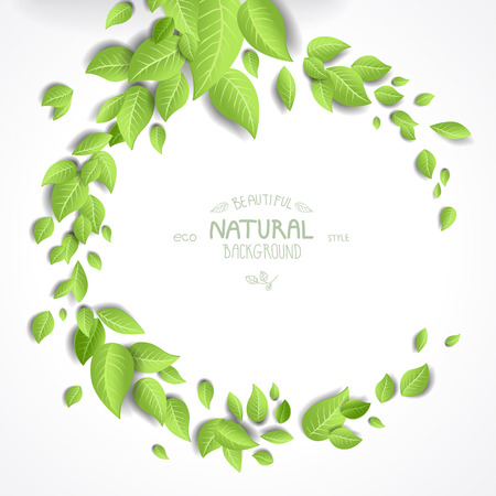 gardens: Eco background with fresh green leaves and place for text