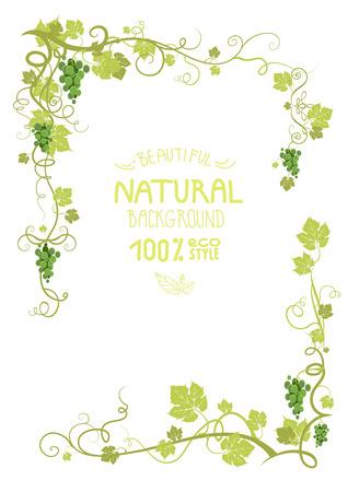 포도 수확: 녹색 잘 익은 포도와 포도 프레임. 텍스트를 배치합니다. 일러스트