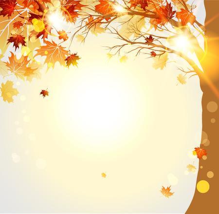 Herfst bomen met maple herfstbladeren en zonlicht. Plaats voor tekst Stock Illustratie