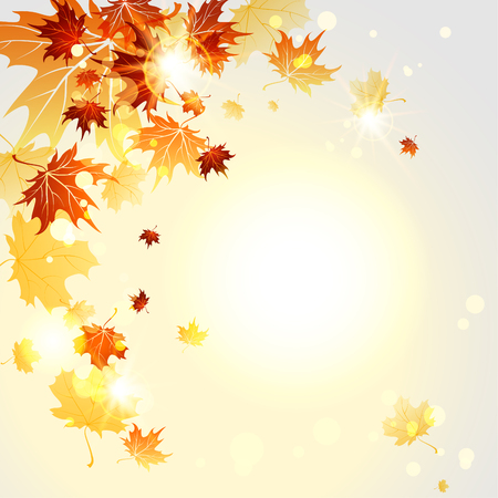 tree in autumn: Falling maple leaves. Autumn vector illustration. Copy space