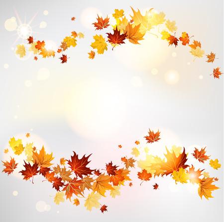 hojas parra: Remolino otoño de hojas de arce con el lugar de texto. Versión de la trama