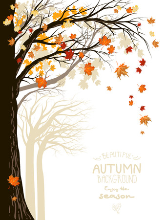 autumnal: Autumnal forest with falling maple leaves. Place for text.