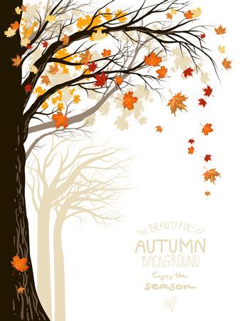 Autumn: Bosque otoñal con la caída de las hojas de arce. Lugar para el texto. Vectores