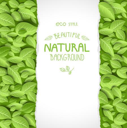 Eco styl tła z liśćmi. Miejsce na tekst