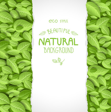 Eco style background with leaves. Place for text Vector