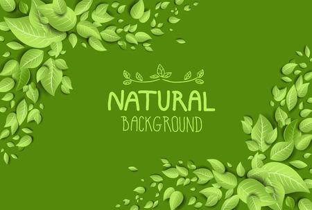 新鮮な葉と緑のエコ背景。テキストのための場所  イラスト・ベクター素材