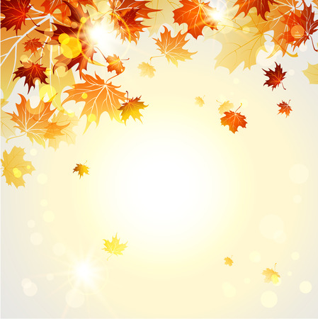 Beautiful autumn background with place for text. Raster version Çizim