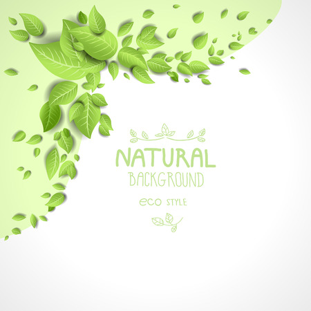 Eco frame with green leaves. Natural background with place for text Vector