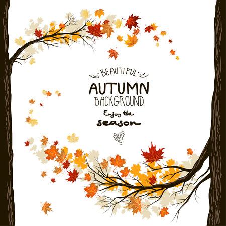 burmak: Yaprakları ile arka plan Güz. Ağaçlardan sonbahar çerçeve Çizim