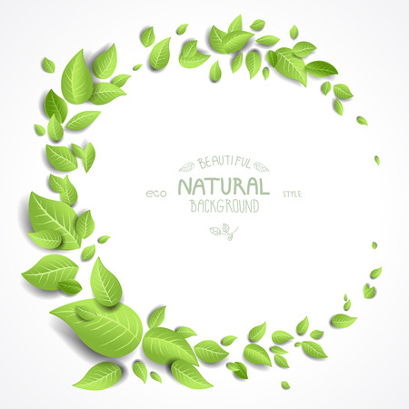 Green leaves frame on white background with copy space Vector