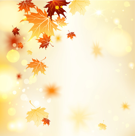 sunbeam background: Fall background with maple leaves. Copy space Illustration
