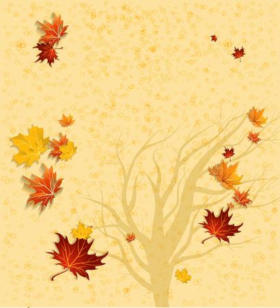 hintergrund herbst: Herbst Hintergrund und Baum-Silhouette mit Kopie Raum. Vektor-Illustration Illustration