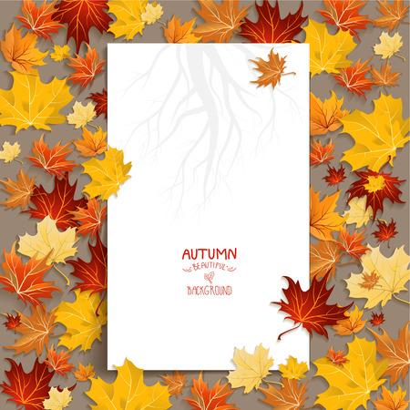 Autumn: En blanco blanco con hojas de arce. Copiar el espacio Vectores