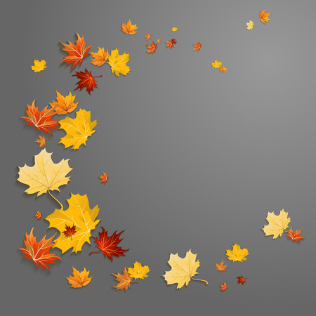 Abstract leaves background on dark background with place for text.