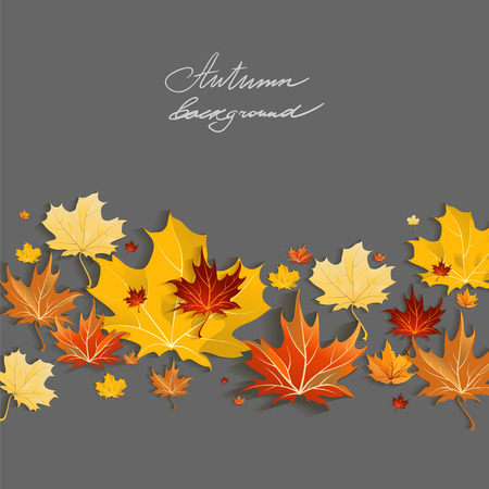 Beautiful maple leaves on dark background with copy space
