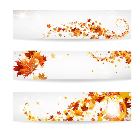 Set of banners with maple leaves. Copy space. Vettoriali