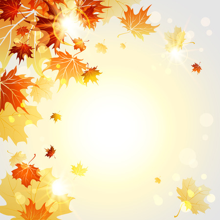 Fall maple leaves on sunny light backgrund. Vector illustration Ilustração