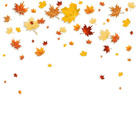 Falling leaves isolated on white background
