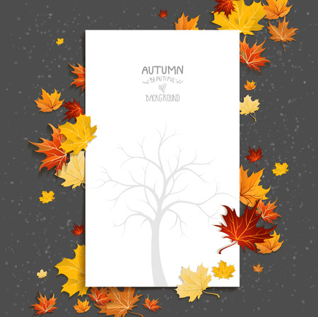 autumn background: White blank on autumn background with maple leaves. Copy space.