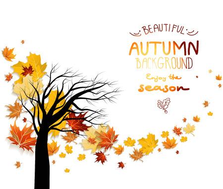 hintergrund herbst: Zusammenfassung Herbst Hintergrund mit Herbstlaub und Silhouette des Baumes. Kopieren Sie Raum.