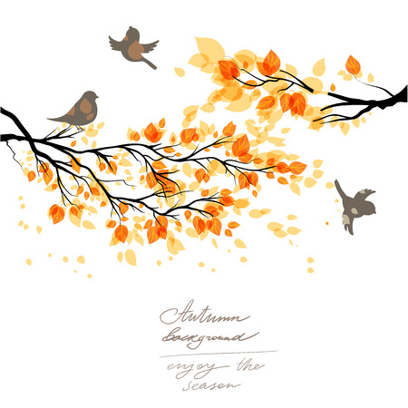 autumn: Branch with yellow leaves and birds. Copy space.