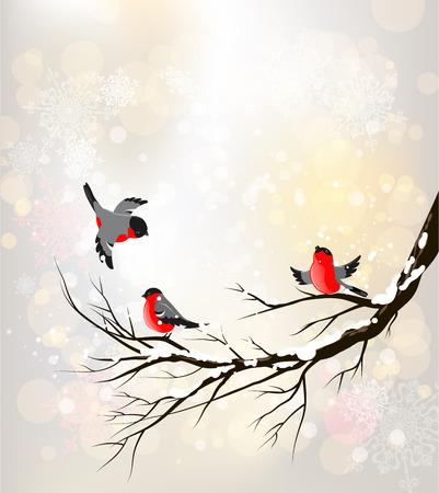 foret sapin: Winter background avec des oiseaux. Place pour le texte.