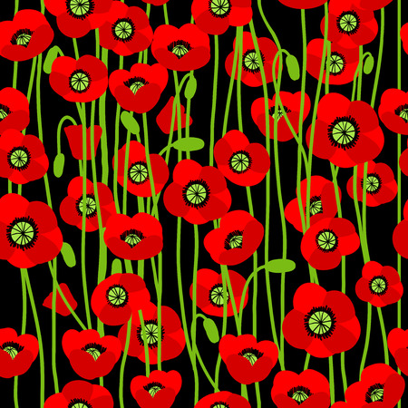 Poppy seamless pattern. Vector background Vector