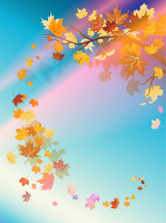 Branch with autumn leaves and sunset sky. Copy space