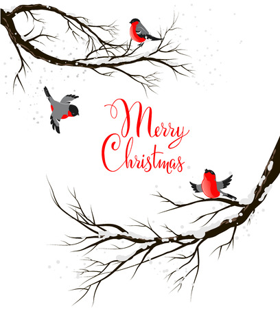 marry christmas: Winter birds on branches. Seasonal backgriund with copy space. Illustration