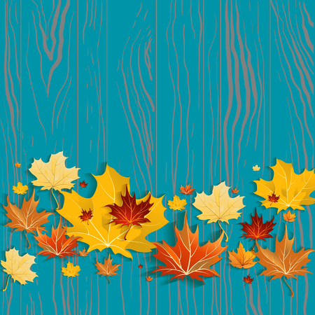 maple wood texture: Yellow maple leaves on green wood background. Seasonal design