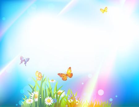sunbeams: Light summer background with butterflies, flowers, green grass and sunbeams Illustration
