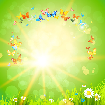 sun flowers: Eco summer background with flowers, sun and butterflies. Design for advertising, leaflet, cards, invitation and so on.