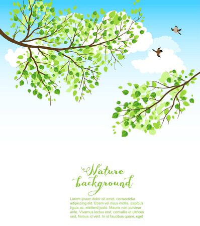 copy: Summer nature background with sky and branch. Copy space