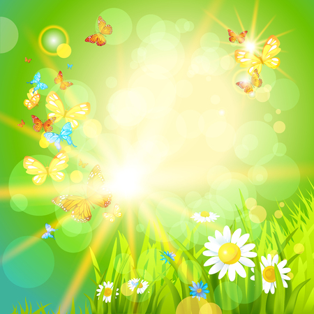 sun flowers: Positive summer background with flowers and insects. Place for text.