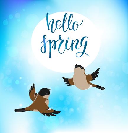 sky: spring blue backdrop