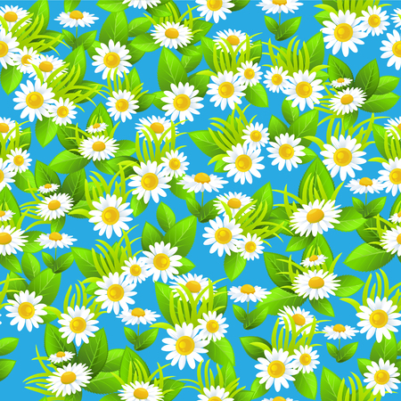 chamomile flower: Blue floral seamless pattern summer