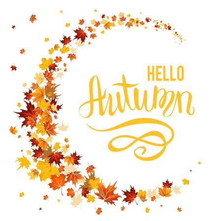 fall leaves: Beautiful autumn leaves