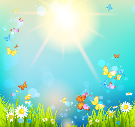 uncultivated: Bright sunshine summer Stock Photo