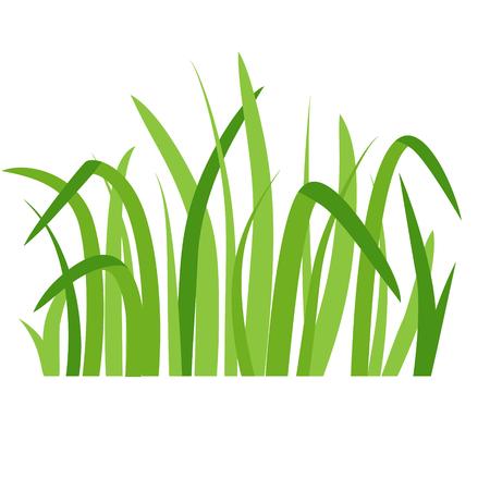 Green grass eco