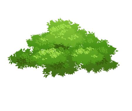 image: Green bush nature