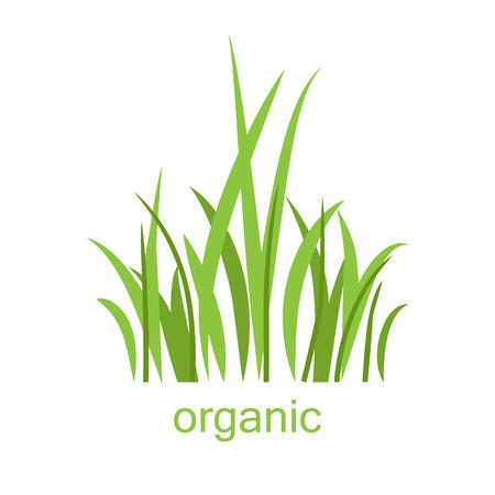 Eco logo grass Illustration