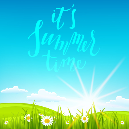 uncultivated: Summer or spring landscape for design banner, ticket, leaflet, card, poster and so on. Green grass and flowers scenery. Illustration